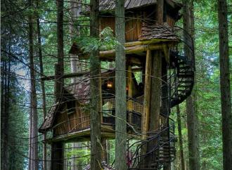 5 casas en árboles que son joyas arquitectónicas