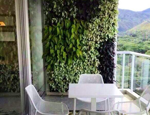 C mo hacer un jard n vertical para tu balc n noticias for Balcon jardin vertical