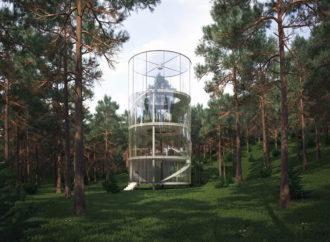 Una casa del árbol que revolucionó la forma de vivir en la naturaleza