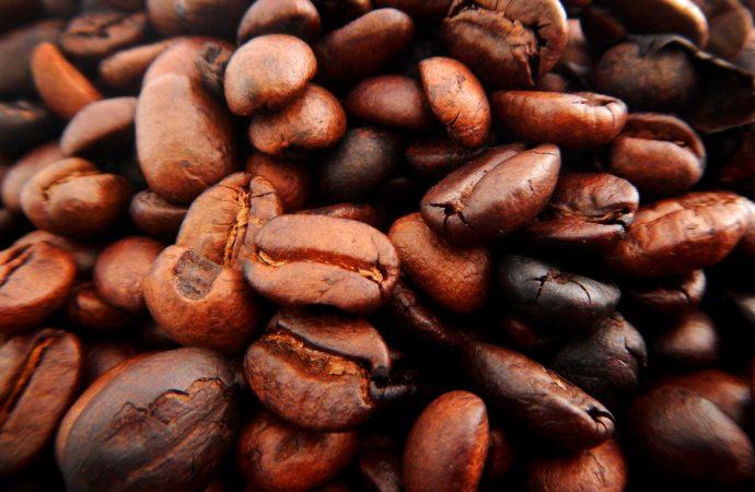 Comienza FECA: un festival para los amantes del café