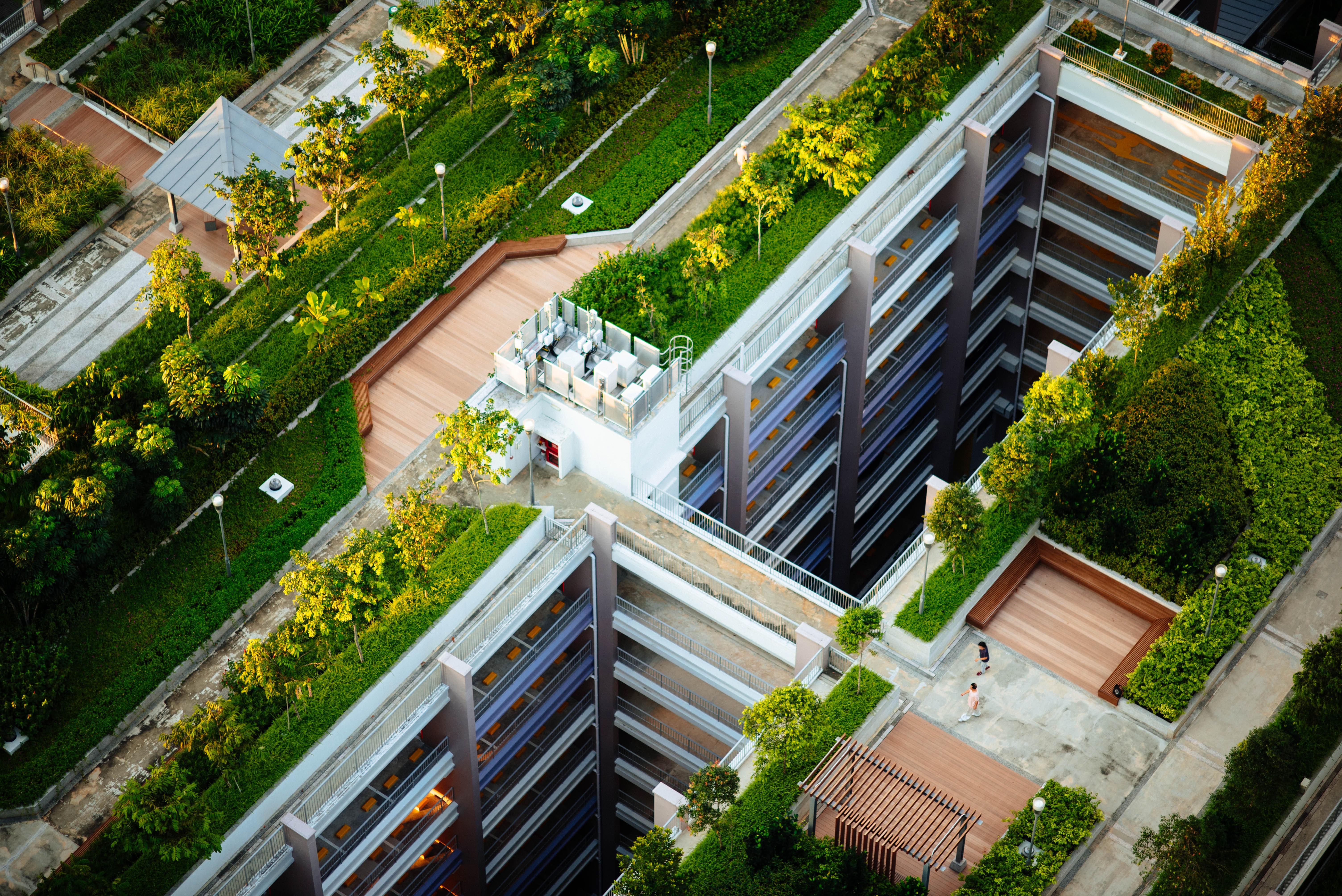 Techos verdes en la ciudad: la tendencia que potenció la cuarentena